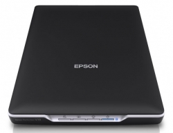 Сканер EPSON Perfection V19